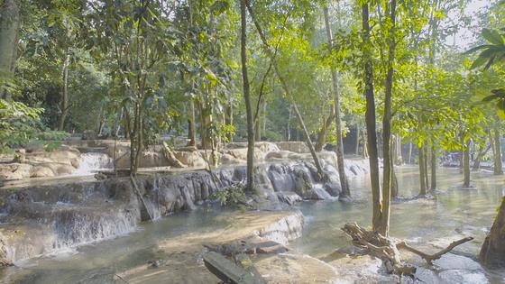 숲 속 정원을 이루고 있는 루앙프라방 탓새폭포 상단.