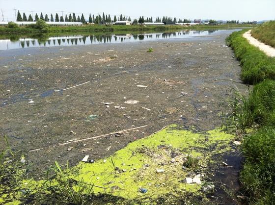 경기도 부천시 굴포천의 오염 현장. 2011년에 촬영된 사진이다. [중앙포토]