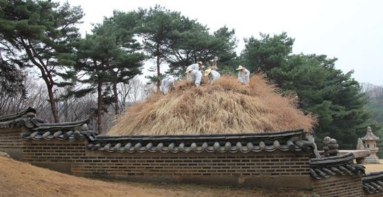 능 옆에서 본 작업.고즈넉한 담장과 오래된 소나무,봉분을 덮은 억새 등이어울려 묘한 정취를 자아내고 있다.