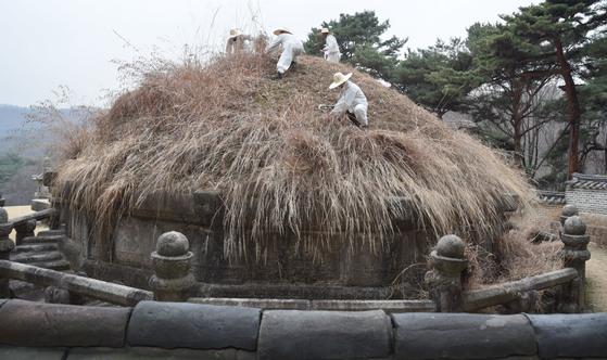 태조 이성계의 왕릉인 건원릉에서 5일인부들이 벌초를 하고있다.