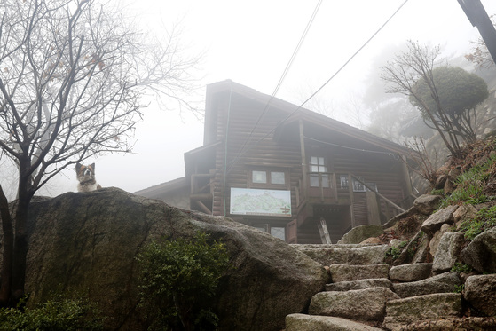 북한산인수봉아래 산기슭에자리한 백운산장의 6일 오후 모습.우상조 기자