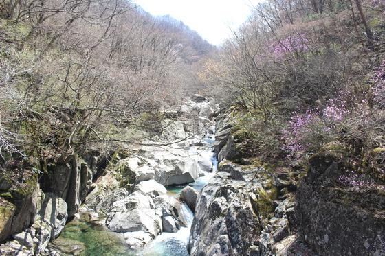 칠선계곡 [사진 국립공원관리공단]