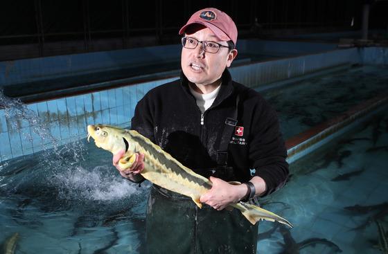 미국에서 철갑상어 종 보존을 연구하고 함양에 터전을 마련한 박철홍 대표. 자신이 키운 철갑상어를 들어보이고 있다. [함양=송봉근 기자]
