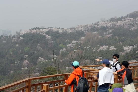 남산에서 바라본 서울시내가 황사와 미세먼지로 뒤덮혀 있다.[중앙포토]