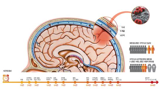 뇌는 두피·두개골·뇌수막에 의해 3중으로 보호된다. 코·입으로 들어온 수막구균이 뇌수막에 침투해 염증을 일으키면 24시간 안에 사망할 수 있는 매우 치명적인 질환이 된다.