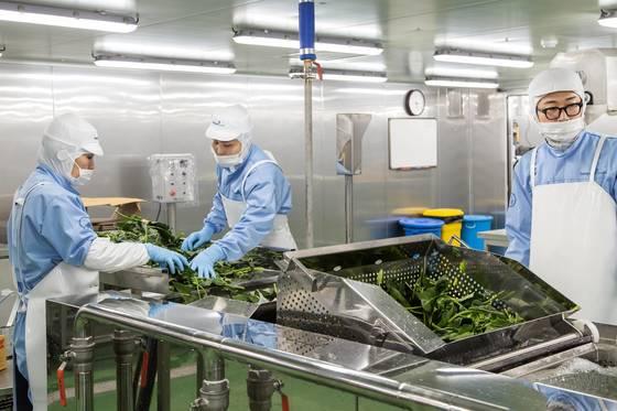 4단 버블세척기로 야채를 씻는 모습. [사진 동원홈푸드]