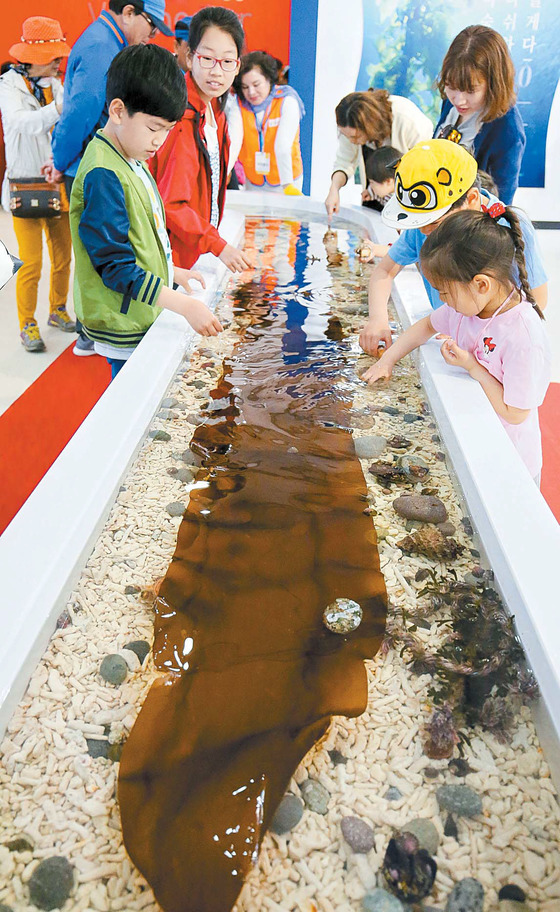 국제해조류박람회장을 찾은 어린이들이 미역과 다시마·톳 등 해조류를 만져보고 있다.