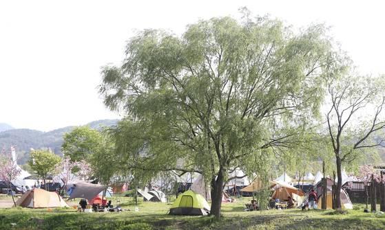 캠핑 페스티벌은 다른 사람들의 다양한 장비를 구경할 수 있는 좋은 기회다. 장진영 기자