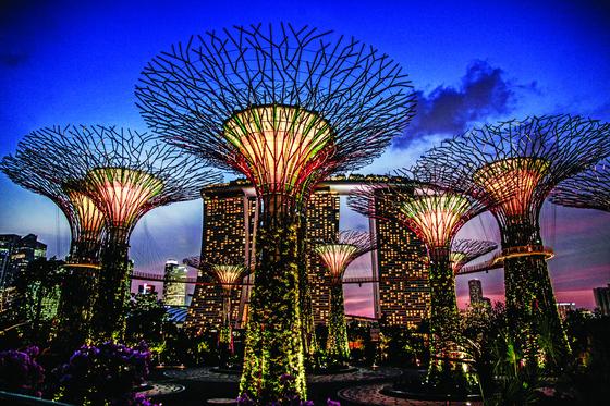 싱가포르의 새로운 명물 '가든스 바이 더 베이'의 수퍼 트리.[사진 싱가포르관광청]
