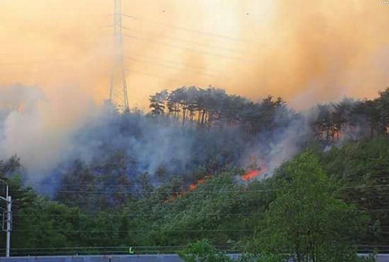 6일 강릉 산불 관련 시민이 촬영한 사진.