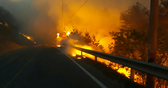 6일 강원도 강릉에서 발생한 산불로 도로변 산림이 불에 타면서 붉은 화염과 짙은 연기가 발생하고 있다. [사진 강원도 소방본부]