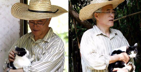 문재인 대통령(2012년 18대 대선후보 당시)과 반려묘 찡찡이. [사진 문재인 캠프 트위터]