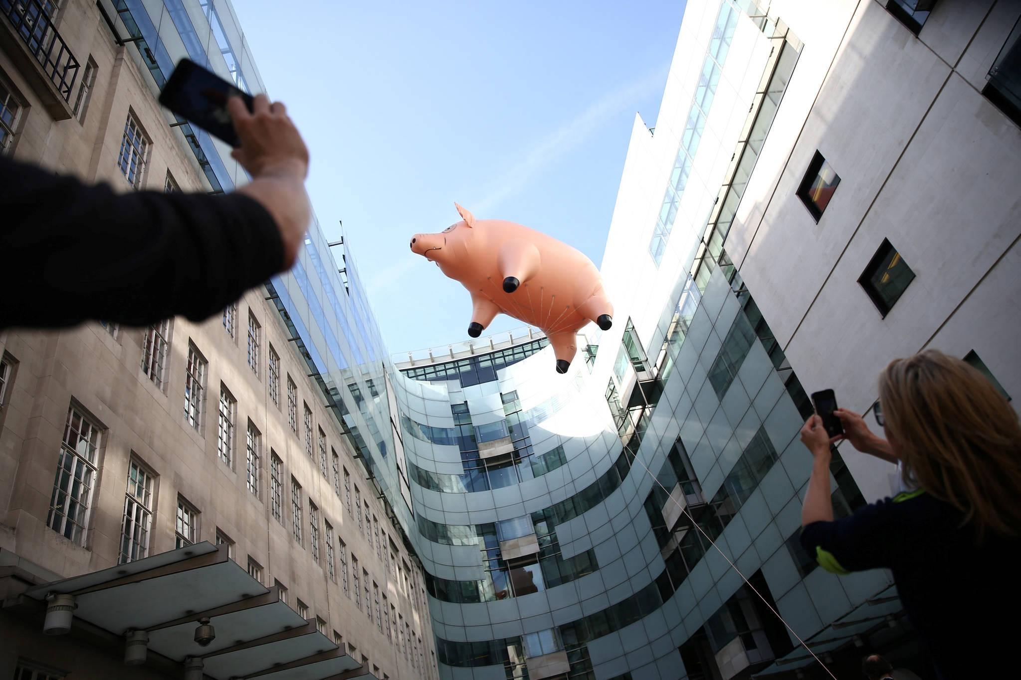 영국 런던 V&A 박물관이 10일(현지시간) 새로운 전시회를 홍보하기 위해 브로드캐스팅 하우스(Broadcasting House) 위에 띄운 핑크 플로이드 돼지가 벽에 부딪히고 있다.[로이터=뉴스1]