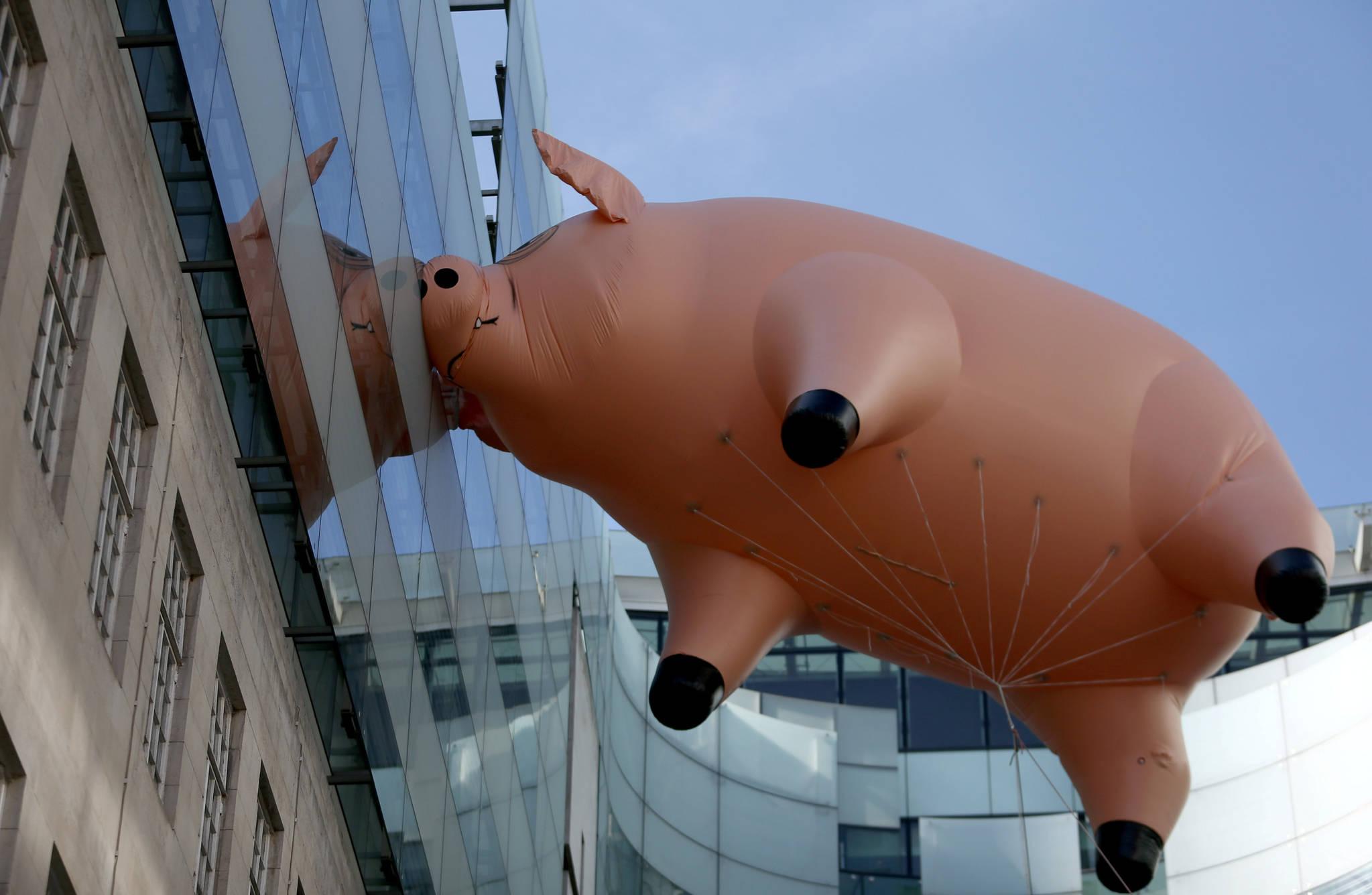 핑크 플로이드 돼지가10일(현지시간) 영국 런던 브로드캐스팅 하우스 옆을 날다 벽에 부딪히고 있다. 이 돼지는 영국 런던 V&A 박물관이 새로운 전시회를 홍보하기 위해 제작했다. [로이터=뉴스1]