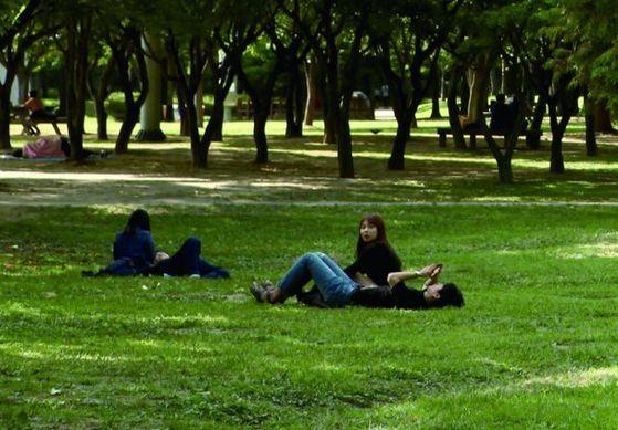 숲이나 풀밭에 눕거나 앉으면 진드기에 물릴 수 있다. 중증 열성 혈소판 감소 증후군(SFTS)에 감염된 진드기에 물릴 경우 자칫 치명적일 수 있다.[중앙포토]