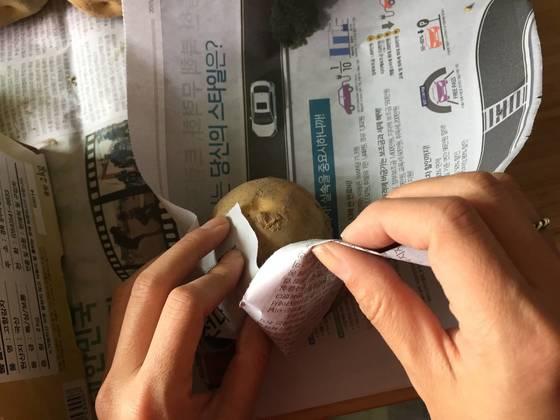 습기를 제거한 감자는 신문지로 한 알씩 둘둘 만다.