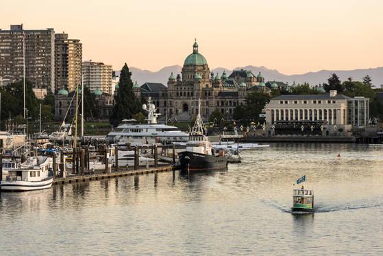 밴쿠버 아일랜드 남단에 자리한 캐나다 브리티시컬럼비아주의 주도 빅토리아. 1897년 지은 주 의사당 건물과 배들이 정박한 항구가 어우러진 풍경이 꼭 고풍스러운 영국 도시 같다.