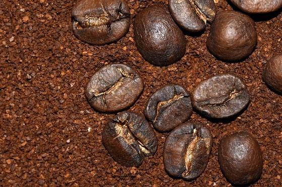 커피 찌꺼기로 텃밭 달팽이 잡기
