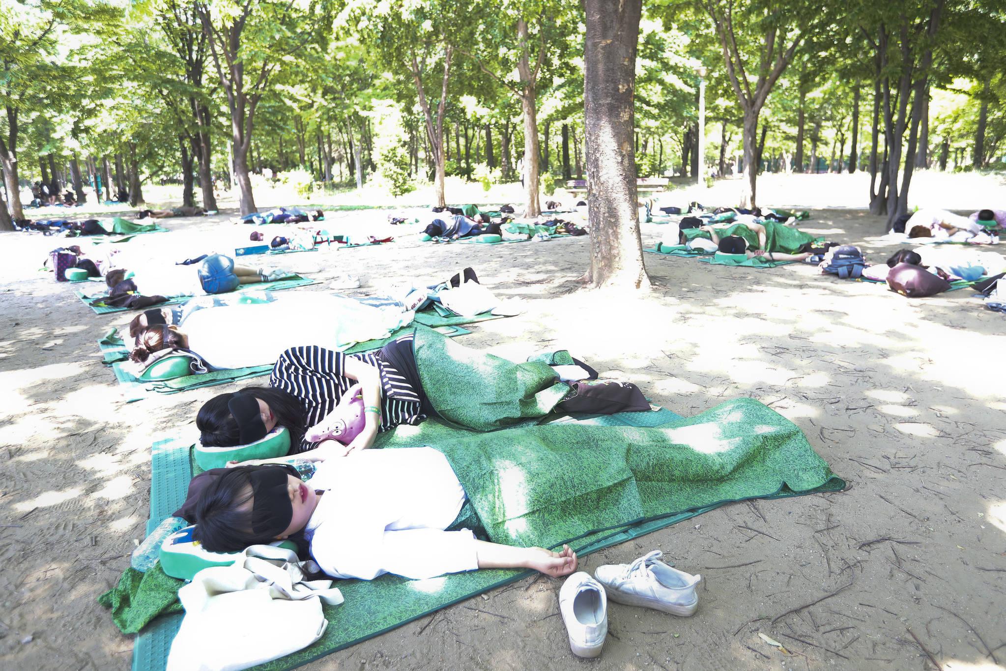 50명의 참가자가 단체로 낮잠을 자고 있다.