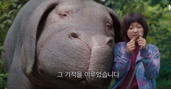 '옥자'는 산골소녀 미자가 친구이자 가족인 슈퍼돼지 옥자를 찾기 위한 여정을 담았다. [사진 넷플릭스]