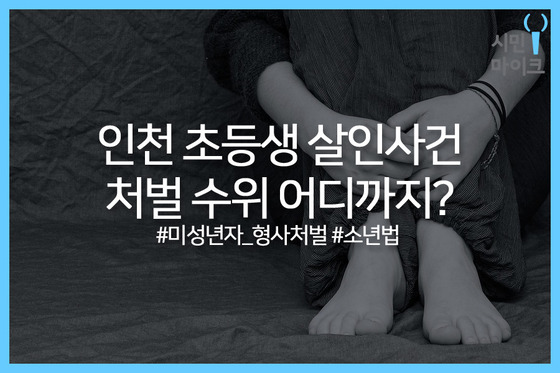 카드뉴스 제작=정유정 인턴 기자(고려대 미디어학부 3년)