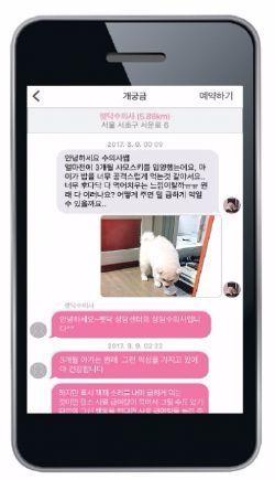 실시간으로 수의사로부터 상담을 받을 수 있는 모바일 애플리케이션 펫닥의 '개궁금' 메뉴. / 사진·펫닥