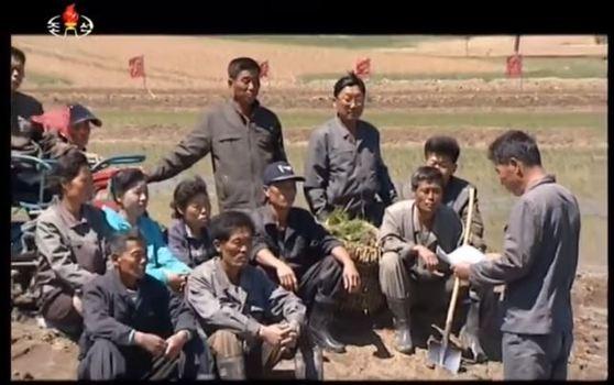 조선중앙TV는 오석산 화광석 광산 노동자를 비롯한 지원자들이 모내기를 위해 평안남도 용강군 협동농장에 모여 있다.[사진 조선중앙TV캡처]