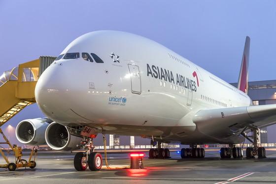 아시아나항공의A380 항공기. 국제선에 투입되는 A380은 다른 비행기와 함께 있으면 동체가 고래처럼 커 보인다는 의미에서 '고래 제트기(whale jet)'로 불린다.  [사진 아시아나항공]