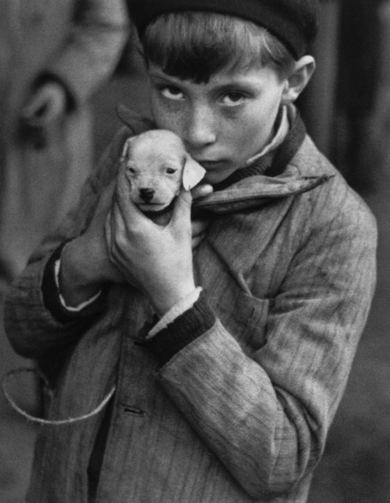'동물시장', 생미셸 선창, 파리, 1927~1928.[사진 성곡미술관]