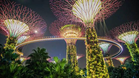 싱가포르의 새로운 랜드마크 가든스 바이 더 베이.