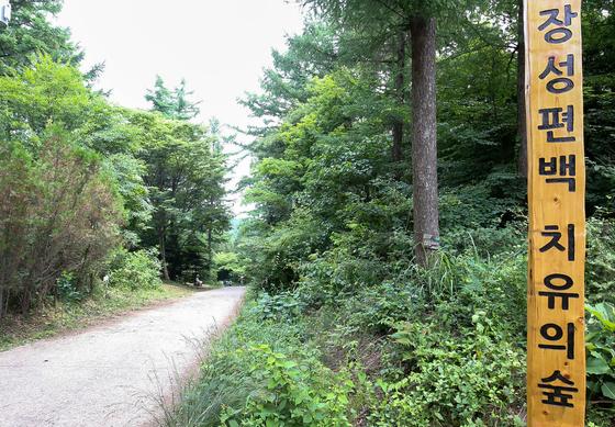 장성 축령산 편백치유의 숲은국내 최대의 인공 조림지이지만나무를 심은 것을 제외하고는 자연 그대로의 모습에 가깝다.프리랜서 장정필