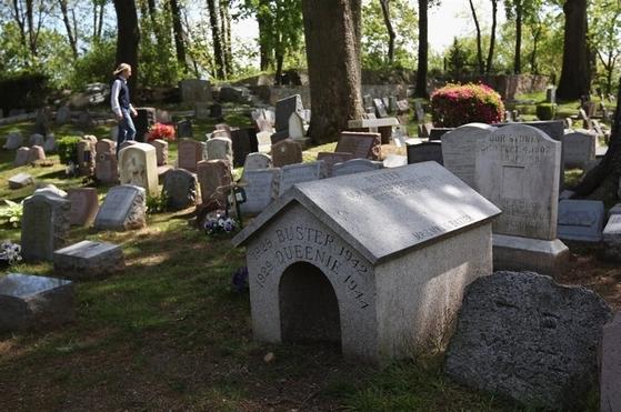 미국 뉴욕주에 있는 하츠데일반려동물 공동묘지.[사진 하츠데일 공동묘지 홈페이지]