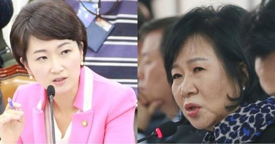 국민의당 이언주 의원(왼쪽)과 더불어민주당 손혜원 의원. [이언주 의원 페이스북, 중앙포토]