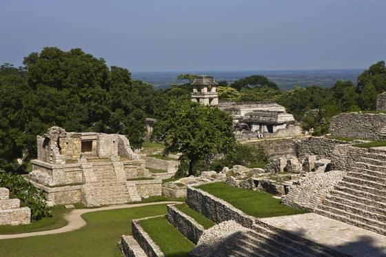 멕시코 남부 도시 팔렝케. 정글 속에 마야 유적이고스란히 남아 있다. [사진 멕시코관광청]