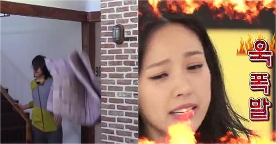 [사진 JTBC '효리네 민박', KBS2 '해피투게더']