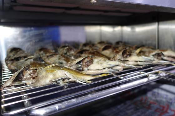 주방 그릴에서 딱돔 여러 마리가 구워지고 있다. 군평선이·금풍생이라는 이름으로 더 잘 알려진 생선이다. 구이로 많이 먹으며 '샛서방고기'라는 별칭도 있다.