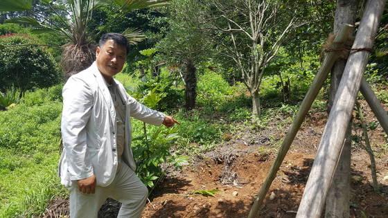 통영시 공원녹지과 이충환 과장이 윤이상 선생의 묘소에 옮겨 심었던 동백나무가 있던 자리를 가리키고 있다. 위성욱 기자