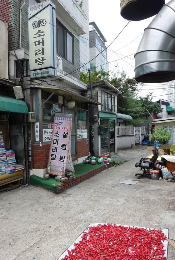 삼각지 대구탕 골목 끝에 있는 '와와 소머리탕' 입구. 서울지방보훈청 뒷담길이다. 주인은 여름 한철 길에서 고추를 말려 김치를 담글 때 쓴다. 완전 자연건조 태양초다.
