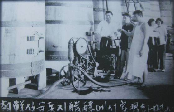 옌타이 장위 와인박물관에 전시된 흑백사진. 1953년 '조선 실습동지 발효(실)에서 실습하면서'란 설명이 붙어있다. 한복 차림의 여성이 눈에 띈다. [옌타이=예영준 특파원]