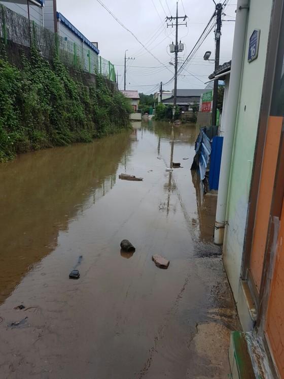 16일 오전 충북 청주에 시간당 90㎜가 넘는 폭우가 쏟아지면서청주시 율량동 주택가에 물이 찼다. [사진 독자 제공]