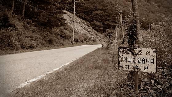 산 아래 마을에는 새로 난 길에게 밀려 통행이 끊어진 옛길이 있다. 늦은 오후에 이 길은 산책하기에 안성맞춤 길이 된다. 걷다 보면 꽃을 만나기도 하고, 꽃을 위하는 마음을 만나기도 한다. [사진 조민호]