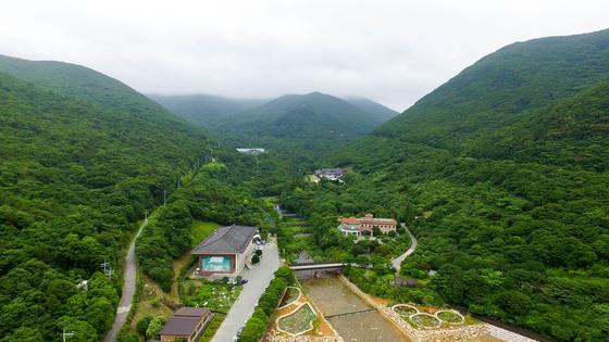 국내 최대 규모의 난대림인 전남 완도수목원 전경.[프리랜서 장정필]
