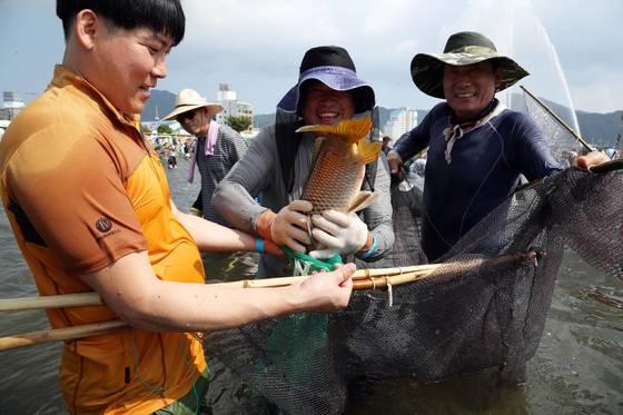 지난해 7월 전남 장흥군에서 열린 '정남진 장흥 물축제' 중 '물고기 잡기' 체험 모습. [사진 장흥군]