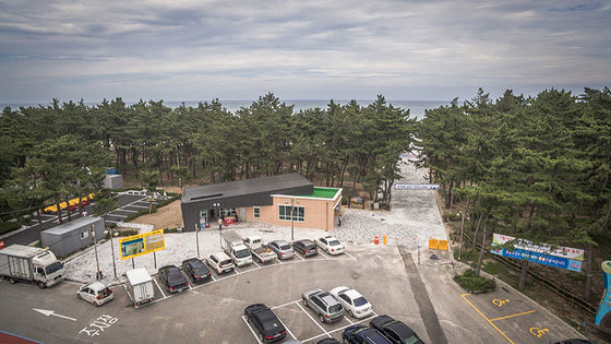 연곡해변 솔향기캠핑장 전경 [사진연곡해변 솔향기캠핑장]