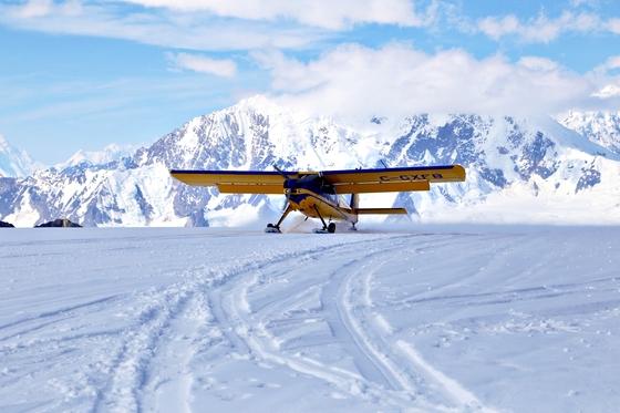 캐나다 유콘주는 극지방을 제외하고 가장 큰 빙하지대를 품고 있다. 클루아니 국립공원의 경비행기 투어를 하면 빙하기를 방불케하는 풍경 한가운데 착륙할 수 있다.
