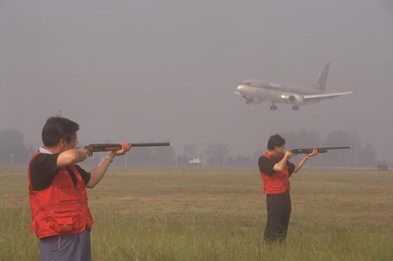 김포공항 관리공단 직원들이 버드스트라이크(새와 비행기의 충돌)를 막기 위해 활주로 주변 초지에서 공포탄을 발사해 새를 쫓아내고 있다. [중앙포토]