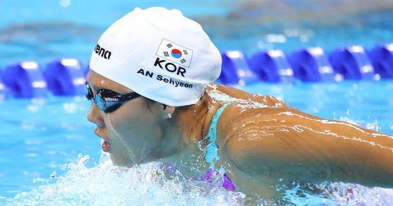 안세현, 세계선수권 접영 100m 결승행  (서울=연합뉴스) '한국 여자수영의 간판' 안세현은 24일 오전(이하 한국시간) 헝가리 부다페스트의 다뉴브 아레나에서 열린 2017 국제수영연맹(FINA) 세계수영선수권대회 여자 접영 100m 준결승에서 57초15의 한국신기록을 세우고 2조 4위, 전체 16명 중 6위로 8명이 겨루는 결승에 진출했다. 사진은 지난 2014년 인천아시안게임에서 힘껏 헤엄치는 안세현. 2017.7.24 [연합뉴스 자료사진]  photo@yna.co.kr(끝)<저작권자(c) 연합뉴스, 무단 전재-재배포 금지>
