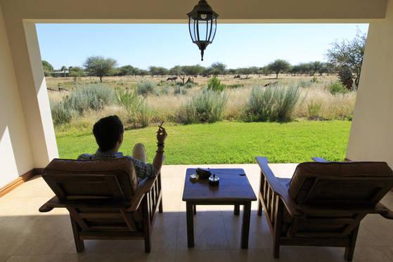 나미비아 여행에서 묵은 숙소. 뚫려 있는 창 바로 앞에 동물들이 풀을 뜯어 먹는 모습이 그대로 보인다.