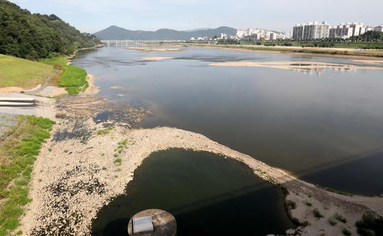 충남 공주보 개방으로 공주 시내 금강이 바닥을 드러내고 있다. [프리랜서 김성태]