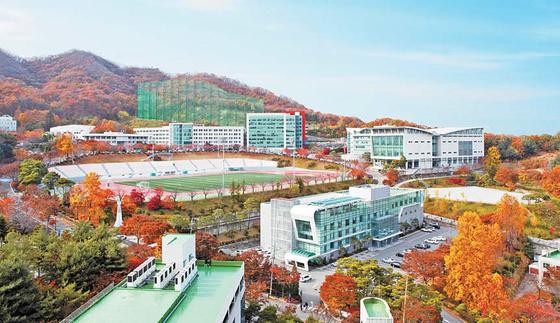 용인대는 예체능 특성화대학으로 무도·체육·문화예술 분야는 물론 보건복지, 환경 및 경영 관련 학과가 있다. [사진 용인대]